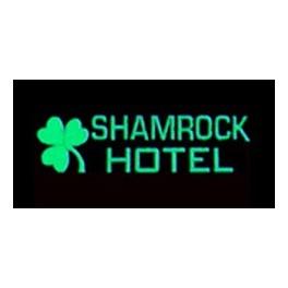 MILLER 6181 - NEON SIGN - SHAMROCK HOTEL SIGN - LARGE