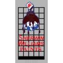 MILLER 9981 - NEON SIGN - SHERWIN WILLIAMS